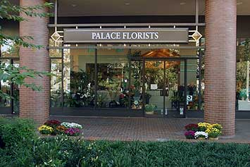 Image Palace Florists